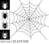 Spiders and web. Стоковая иллюстрация, иллюстратор Silanti / Фотобанк Лори