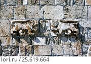 Фигуры львов (леопардов) на Львиных воротах старого города Иерусалима (2013 год). Стоковое фото, фотограф Николай Гусев / Фотобанк Лори