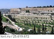Старый город Иерусалим - вид с Елеонской горы на левую часть города и укрепленные террасы (2013 год). Стоковое фото, фотограф Николай Гусев / Фотобанк Лори