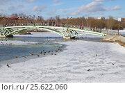 Купить «Москва. Мост в парке Царицыно», фото № 25622060, снято 26 февраля 2017 г. (c) Елена Коромыслова / Фотобанк Лори