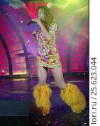 Купить «Анита Цой», эксклюзивное фото № 25623044, снято 16 октября 2005 г. (c) Михаил Ворожцов / Фотобанк Лори