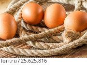 Купить «One chicken egg with a rope», фото № 25625816, снято 14 февраля 2017 г. (c) Валерий Бочкарев / Фотобанк Лори