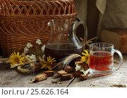 Купить «Квас», фото № 25626164, снято 25 мая 2011 г. (c) Марина Володько / Фотобанк Лори