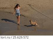 Женщина на пляже с собакой. Ситжес, Испания (2016 год). Редакционное фото, фотограф Елена Корнеева / Фотобанк Лори