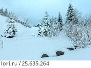 Купить «Brook in winter Ukrainian Carpathian Mountains.», фото № 25635264, снято 15 января 2017 г. (c) Юрий Брыкайло / Фотобанк Лори