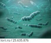 Купить «Helicobacter pylori in microscope. Bactreiias.», фото № 25635876, снято 15 августа 2018 г. (c) Maksym Yemelyanov / Фотобанк Лори