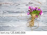 Купить «Дикие анемоны на деревянном фоне», фото № 25640004, снято 13 февраля 2017 г. (c) Татьяна Ляпи / Фотобанк Лори