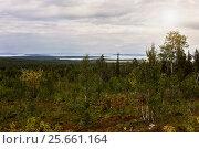 Купить «Lake View Pyaozero. North Karelia. Russia», фото № 25661164, снято 24 августа 2015 г. (c) Наталья Осипова / Фотобанк Лори