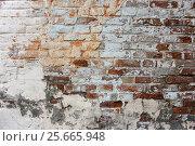 Купить «Старая кирпичная стена. Фон», фото № 25665948, снято 14 августа 2016 г. (c) Наталья Осипова / Фотобанк Лори