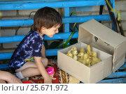 Купить «Счастливый мальчик смотрит на утят», фото № 25671972, снято 27 июля 2012 г. (c) Акоп Васильян / Фотобанк Лори