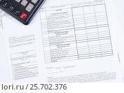 Купить «Налоговая отчетность. Бланк баланса предприятия и калькулятор», фото № 25702376, снято 21 октября 2016 г. (c) Андрей Липинский / Фотобанк Лори