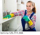 Купить «girl cleaning with cloth», фото № 25711344, снято 23 мая 2018 г. (c) Яков Филимонов / Фотобанк Лори