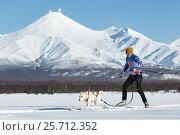 Соревнования по скиджорингу на фоне вулканов, фото № 25712352, снято 10 декабря 2016 г. (c) А. А. Пирагис / Фотобанк Лори