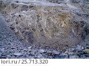 Купить «Золотые жилы», фото № 25713320, снято 13 июля 2013 г. (c) Хайрятдинов Ринат / Фотобанк Лори