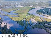 Затопленный лес в пойме реки, фото № 25718692, снято 19 июня 2015 г. (c) Владимир Мельников / Фотобанк Лори