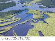 Затопленный лес в пойме реки, фото № 25718732, снято 20 июня 2015 г. (c) Владимир Мельников / Фотобанк Лори