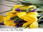 Купить «Букет цветов из жёлтых тюльпанов и ирисов», фото № 25718880, снято 8 марта 2017 г. (c) Анна Рахимова / Фотобанк Лори
