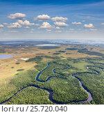 Купить «Forest river in summer, from above», фото № 25720040, снято 21 июня 2015 г. (c) Владимир Мельников / Фотобанк Лори