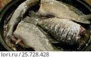 Купить «Four whole fish without head frying in a cast-iron skillet over an open fire. HD», видеоролик № 25728428, снято 28 февраля 2017 г. (c) ActionStore / Фотобанк Лори
