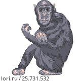 Купить «Funny cartoon monkey Chimpanzee», иллюстрация № 25731532 (c) Коваленкова Ольга / Фотобанк Лори
