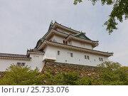 Купить «Главная башня (донжон) замка Вакаяма, Япония. Реконструкция 1958 г.», фото № 25733076, снято 24 июля 2016 г. (c) Иван Марчук / Фотобанк Лори