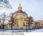 Санкт-Петербург, вид на Петропавловскую крепость, фото № 25735992, снято 4 января 2017 г. (c) Алексей Ларионов / Фотобанк Лори