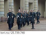 Купить «Королевские гвардейцы маршируют у дворца дождливым днем. Стокгольм, Швеция», фото № 25739740, снято 29 августа 2016 г. (c) Виктор Карасев / Фотобанк Лори