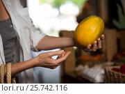 Купить «Woman hand holding papaya», фото № 25742116, снято 4 октября 2016 г. (c) Wavebreak Media / Фотобанк Лори