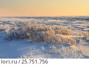 Купить «Зимний рассвет на берегу Байкала», фото № 25751756, снято 7 марта 2017 г. (c) Овчинникова Ирина / Фотобанк Лори