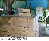 Compressed sawdust briquette. Стоковое фото, фотограф Андрей Силивончик / Фотобанк Лори