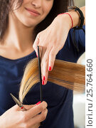 Купить «Close up view of female hairdresser hands cutting hair tips», фото № 25764660, снято 12 июня 2016 г. (c) Людмила Дутко / Фотобанк Лори