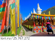 Купить «Asia, China, Sichuan province, UNESCO World Heritage Site, Jiuzhaigou National Park, Shuzheng Tibetan village, prayer flags.», фото № 25767272, снято 14 октября 2015 г. (c) age Fotostock / Фотобанк Лори
