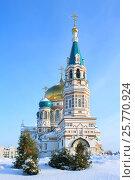 Город Омск, Успенский кафедральный собор, фото № 25770924, снято 15 января 2017 г. (c) Виктор Топорков / Фотобанк Лори
