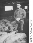 Купить «Man farmer standing in pigsty», фото № 25772316, снято 16 октября 2018 г. (c) Яков Филимонов / Фотобанк Лори