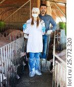 Купить «Farmer and veterinarian in pigsty», фото № 25772320, снято 21 октября 2018 г. (c) Яков Филимонов / Фотобанк Лори