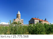 Купить «View of Alaverdi Monastery in the Alazani valley. Kakheti region. Georgia», фото № 25775568, снято 18 сентября 2016 г. (c) Elena Odareeva / Фотобанк Лори