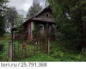 Купить «Заброшенный дом в деревне», фото № 25791368, снято 27 июля 2016 г. (c) Корженевская Лариса / Фотобанк Лори