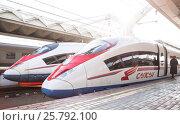 Купить «High-speed train Sapsan on the platform of the Leningrad railway station», фото № 25792100, снято 14 марта 2017 г. (c) Станислав Сергеев / Фотобанк Лори