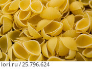 Купить «Raw conchiglie pasta», фото № 25796624, снято 13 октября 2016 г. (c) Wavebreak Media / Фотобанк Лори