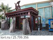 Купить «Вход в музей бабочек (Mariposario del Drago) рядом с Драконьим деревом. Город Икод Де Лос Винос (Icod de los Vinos). Тенерифе, Канары, испания», фото № 25799356, снято 8 января 2016 г. (c) Кекяляйнен Андрей / Фотобанк Лори
