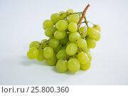 Купить «Close-up of green bunch of grapes», фото № 25800360, снято 19 декабря 2016 г. (c) Wavebreak Media / Фотобанк Лори