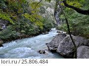 Купить «View of the mountain river Yupshera Abkhazia», фото № 25806484, снято 26 сентября 2014 г. (c) Александр Карпенко / Фотобанк Лори