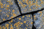 Yellow lichen growing on gray stones, фото № 25807388, снято 21 февраля 2017 г. (c) Евгений Сергеев / Фотобанк Лори