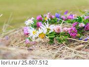 Венок из полевых цветов на фоне скошенного сена. Стоковое фото, фотограф Kroshanya / Фотобанк Лори