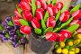 Colorful wooden tulips stand in small bucket, фото № 25815200, снято 25 февраля 2017 г. (c) Евгений Сергеев / Фотобанк Лори