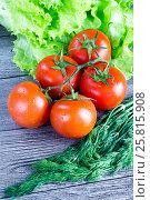 Свежие томаты с укропом и салатом на деревянном столе. Стоковое фото, фотограф Михаил Аникаев / Фотобанк Лори