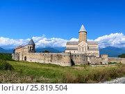 Купить «View of Alaverdi Monastery in the Alazani valley. Kakheti region. Georgia», фото № 25819504, снято 18 сентября 2016 г. (c) Elena Odareeva / Фотобанк Лори