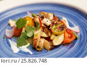 Купить «Chicken salad on blue plate», фото № 25826748, снято 14 марта 2017 г. (c) Федор Кондратенко / Фотобанк Лори