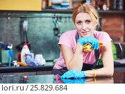 Купить «Cleaning service. Woman cleaner portrait», фото № 25829684, снято 2 февраля 2017 г. (c) Дмитрий Калиновский / Фотобанк Лори
