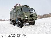 Купить «Шведский военный автомобиль Volvo Laplander C304 (используемый в качестве туристического)», фото № 25831404, снято 12 декабря 2017 г. (c) А. А. Пирагис / Фотобанк Лори